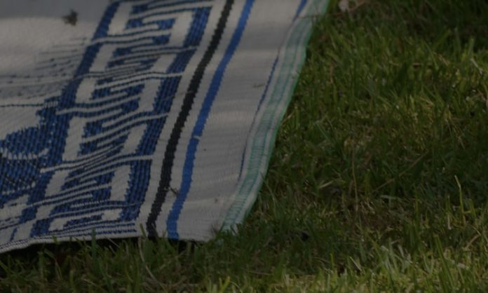 Best-Picnic-Blankets