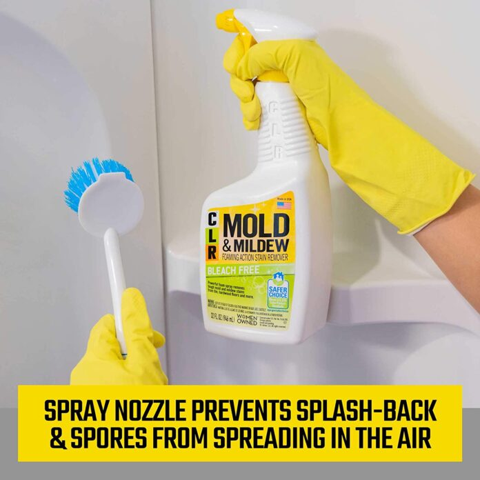Best Mold Cleaners