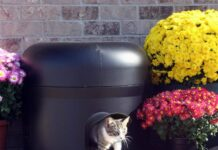 Best Outdoor Cat Houses