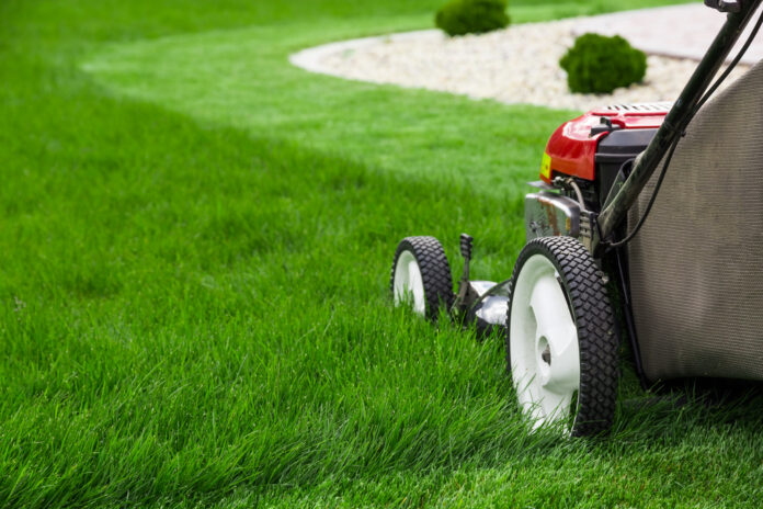 one-of-the-lawn-mower-types