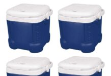 Igloo Ice Cube Cooler Review