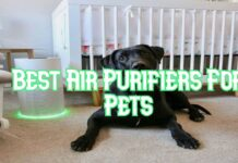 Best-Air-Purifiers-For-Pets