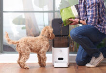Best Automatic Dog Feeder Diy