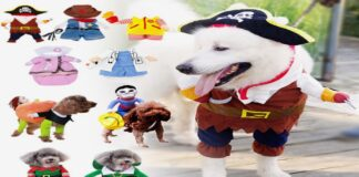 Best-dog-costumes-for-Halloween-Christmas-and-Parties