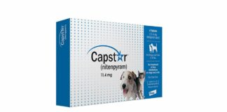 Capstar-For-Dogs-Reviews