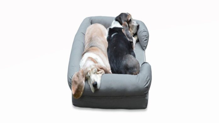 PetFusion-Ultimate-Dog-Bed-Review
