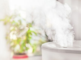 best-humidifiers-review