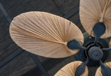 best-leaf-ceiling-fan-reviews