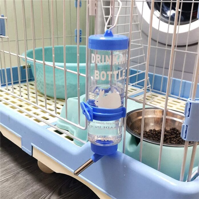 Best Rabbit Water Bottles