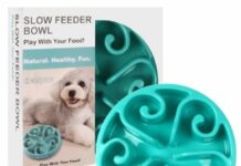 Best Slow Feeder Dog Bowls